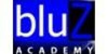 Bluz Academy
