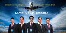 Wings Aviation Academy