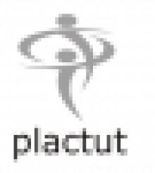 Plactut Consultants Inc