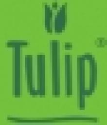Tulip International (College Of Health, Fitness & Beauty)